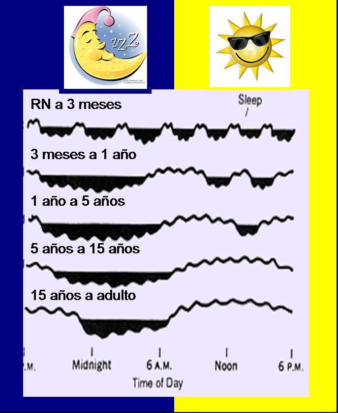Preguntas frecuentes sobre el sueño en los niños  - Dr. Ferré - Especialista en trastornos del sueño