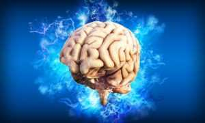 sueño y cerebro
