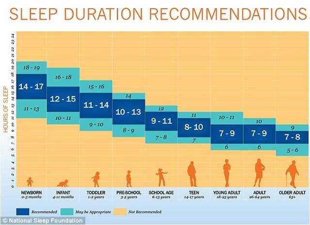 ¿Cuantas horas hay que dormir?
